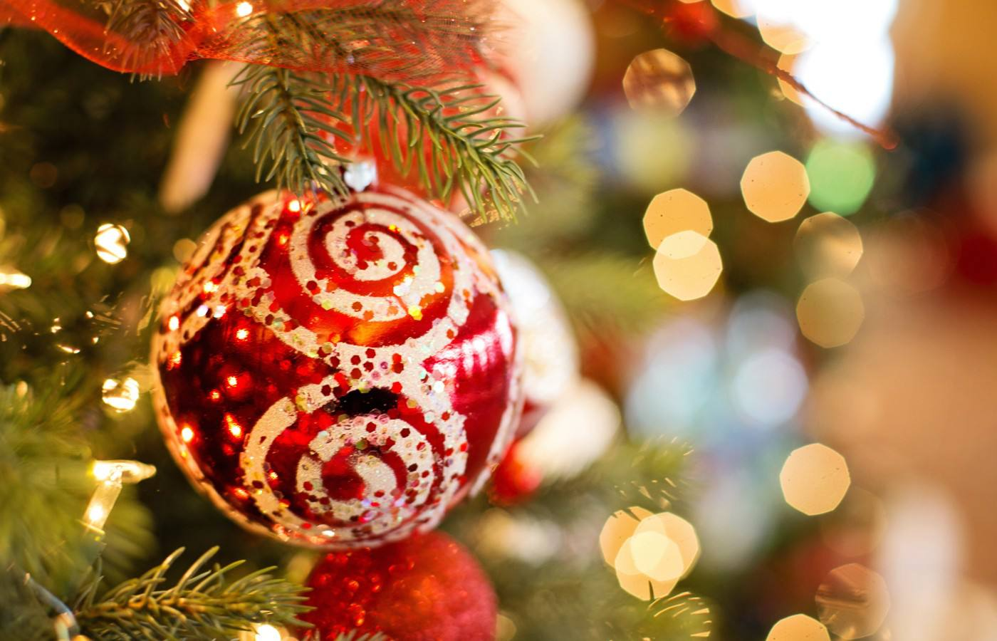 How to Select and Care for a Real Tree This Christmas